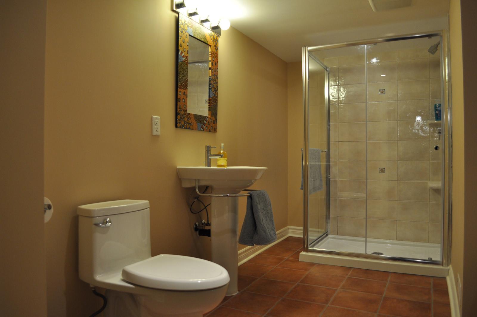 Basement Bathroom Design  Basement Bathroom Ideas for Attractive Looking Interior