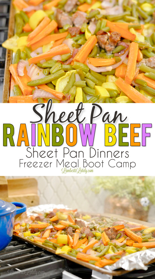Beef Sheet Pan Dinners  Sheet Pan Rainbow Beef Part 3 Sheet Pan Dinners Freezer