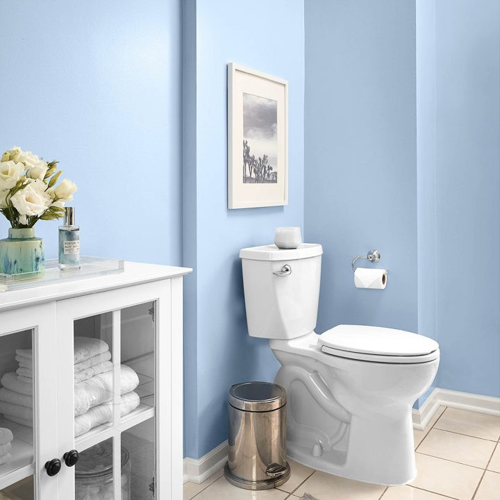 Best Bathroom Paint Colors 2020  2020 Paint Color Trends