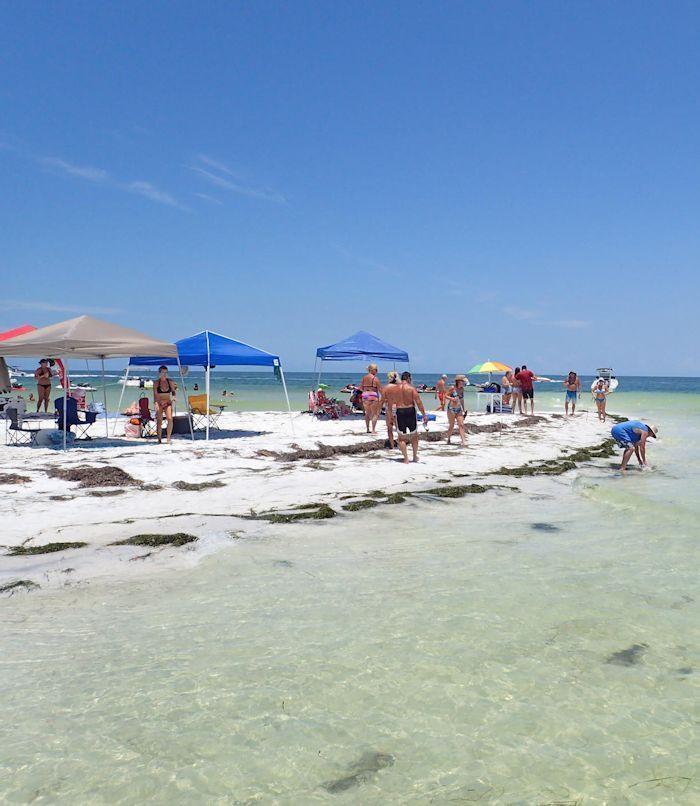 Best Beach Party Ideas  Birthday Party Ideas Tampa FL