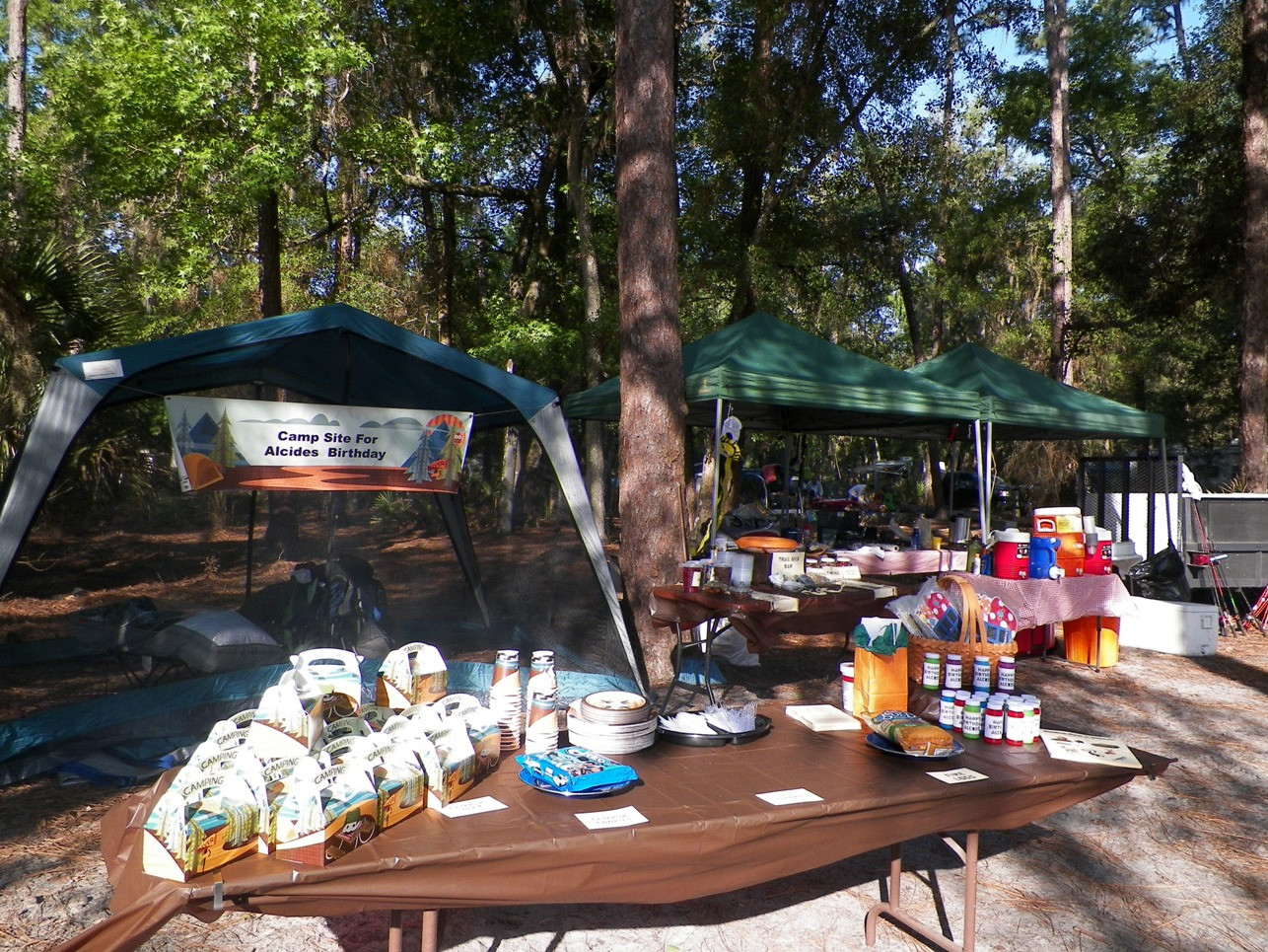 Camping Ideas For Adults  Birthday Parties in the Outdoors