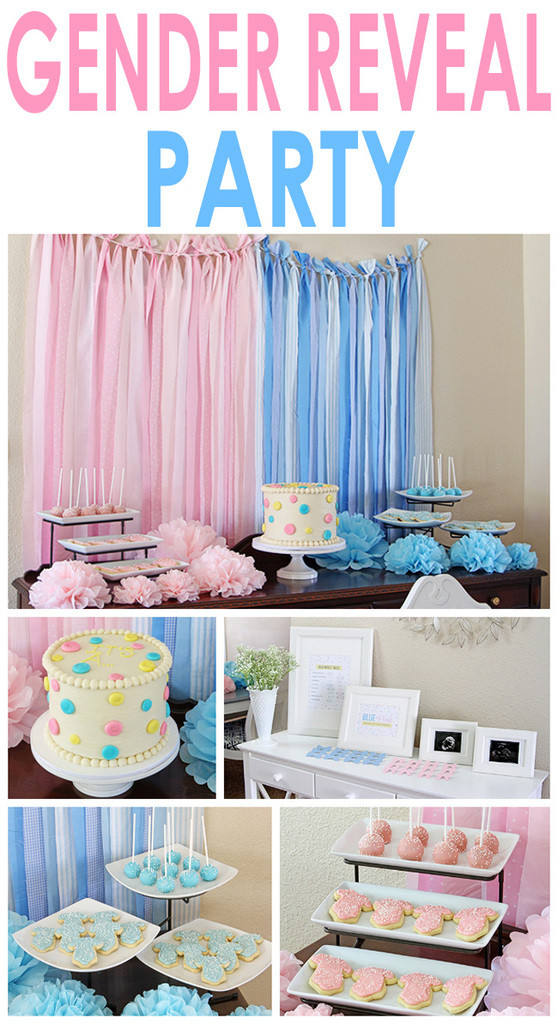 Cute Gender Reveal Party Ideas  Gender Reveal Party
