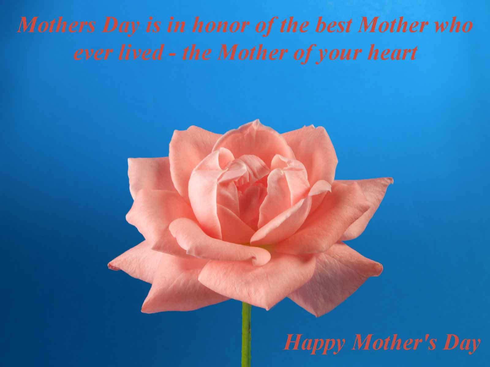 Dead Mother Day Quotes  Quotes To Honor Deceased Mothers QuotesGram