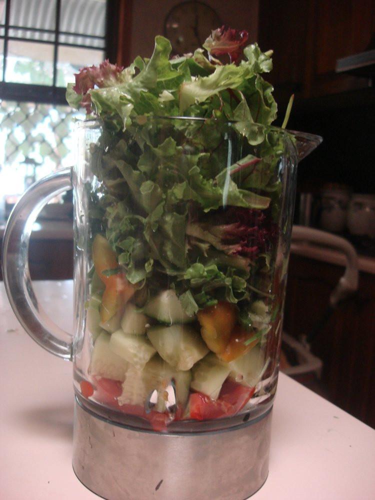 Diet Smoothie Recipes  Alkaline Diet Recipe 146 Antioxidant Green Smoothie