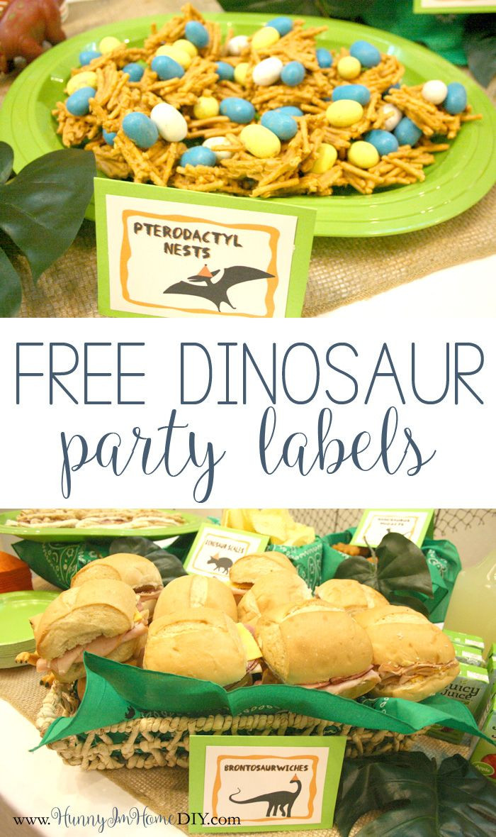 Dinosaur Food Ideas For Birthday Party  My Dinosaur Birthday Party and a freebie