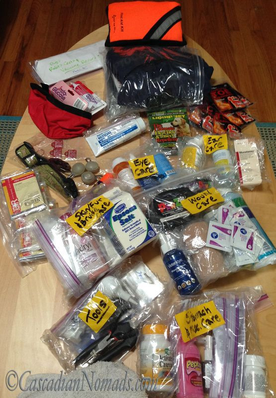 DIY Backpacking First Aid Kit  DIY Pet First Aid Kit plete with all needed dog first