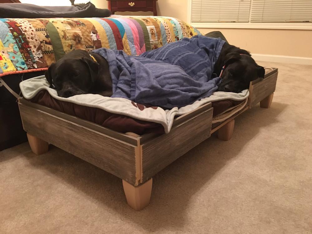 DIY Dog Bed Frame  How We Built A Rustic DIY Dog Bed Frame