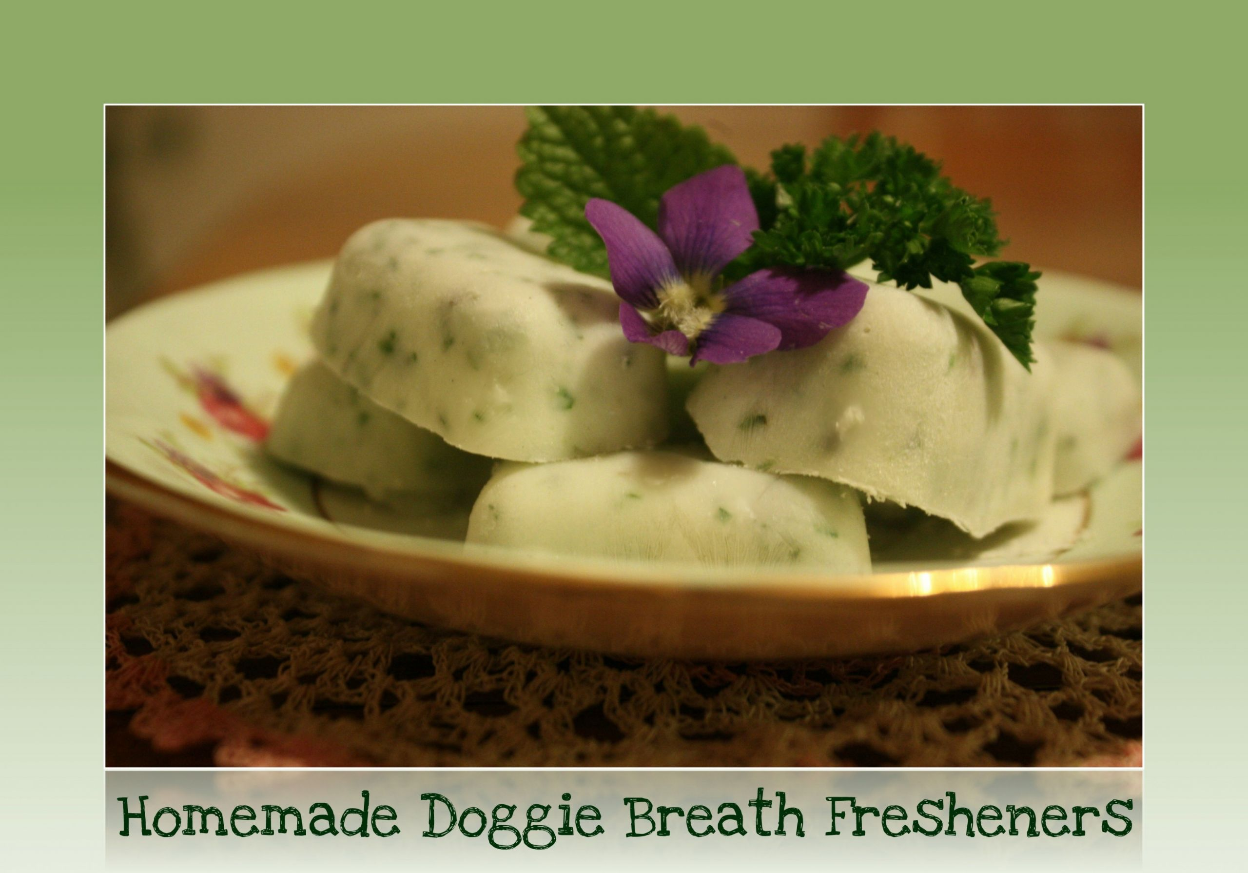 DIY Dog Breath Freshener  Homemade Doggie Breath Freshener Treats
