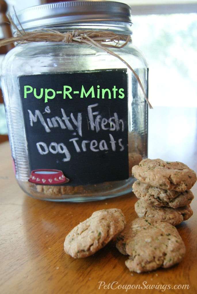 DIY Dog Breath Freshener  Homemade dog mints that are easy and effective at