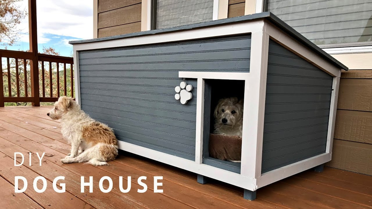 DIY Large Dog House  DIY Insulated Dog House Build