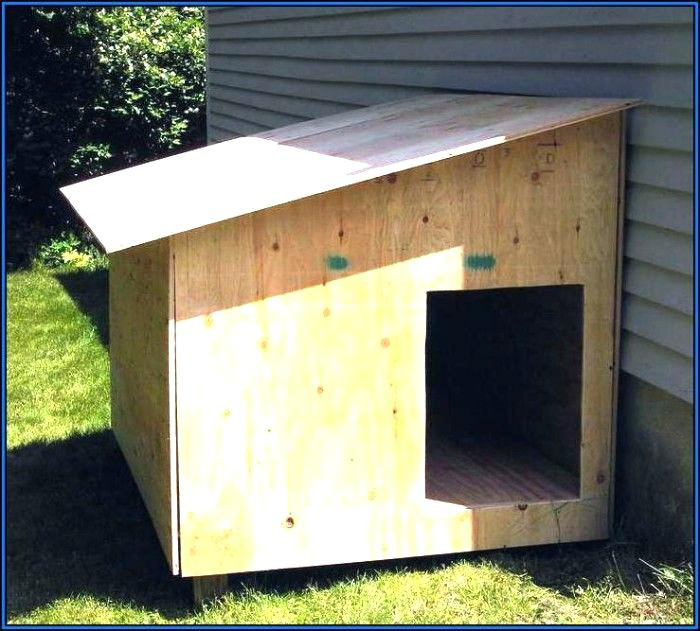 DIY Large Dog House  oconnorhomesinc