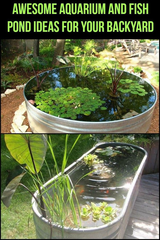 DIY Outdoor Aquarium  50 Fascinating DIY Indoor Aquaponics Fish Tank Ideas