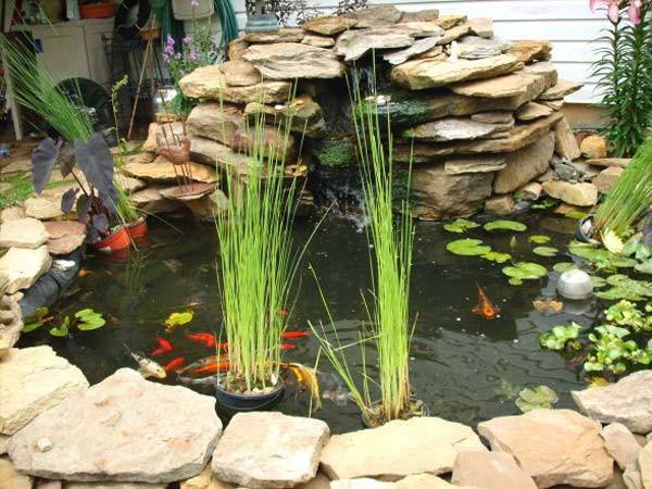 DIY Outdoor Aquarium  21 Small Garden Backyard Aquariums Ideas That Will