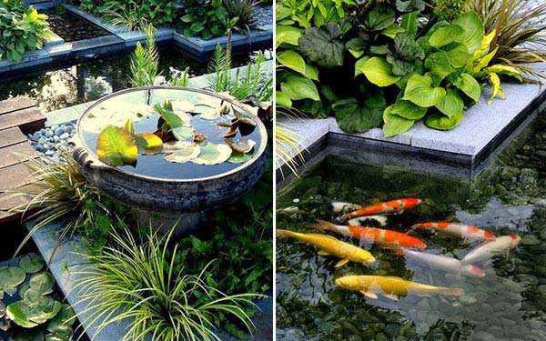 DIY Outdoor Aquarium  15 Awesome Small Backyard Aquarium DIY Ideas
