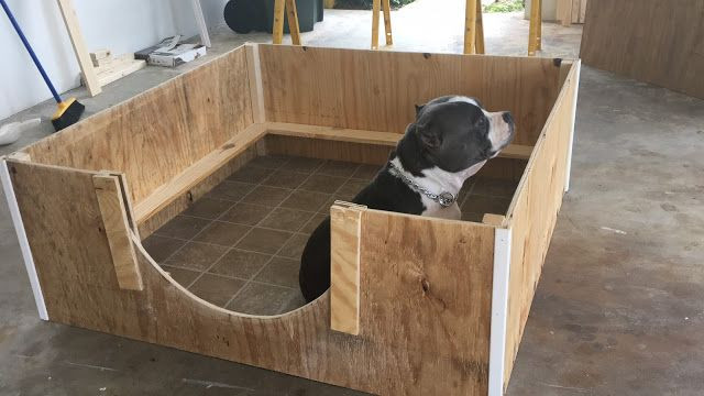 DIY Whelping Box  How to Create A Quick and Inexpensive Whelping Box