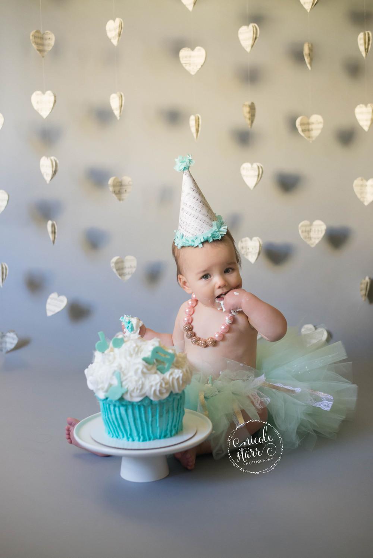 First Birthday Cake Smash  A Musical First Birthday Cake Smash — Saratoga Springs