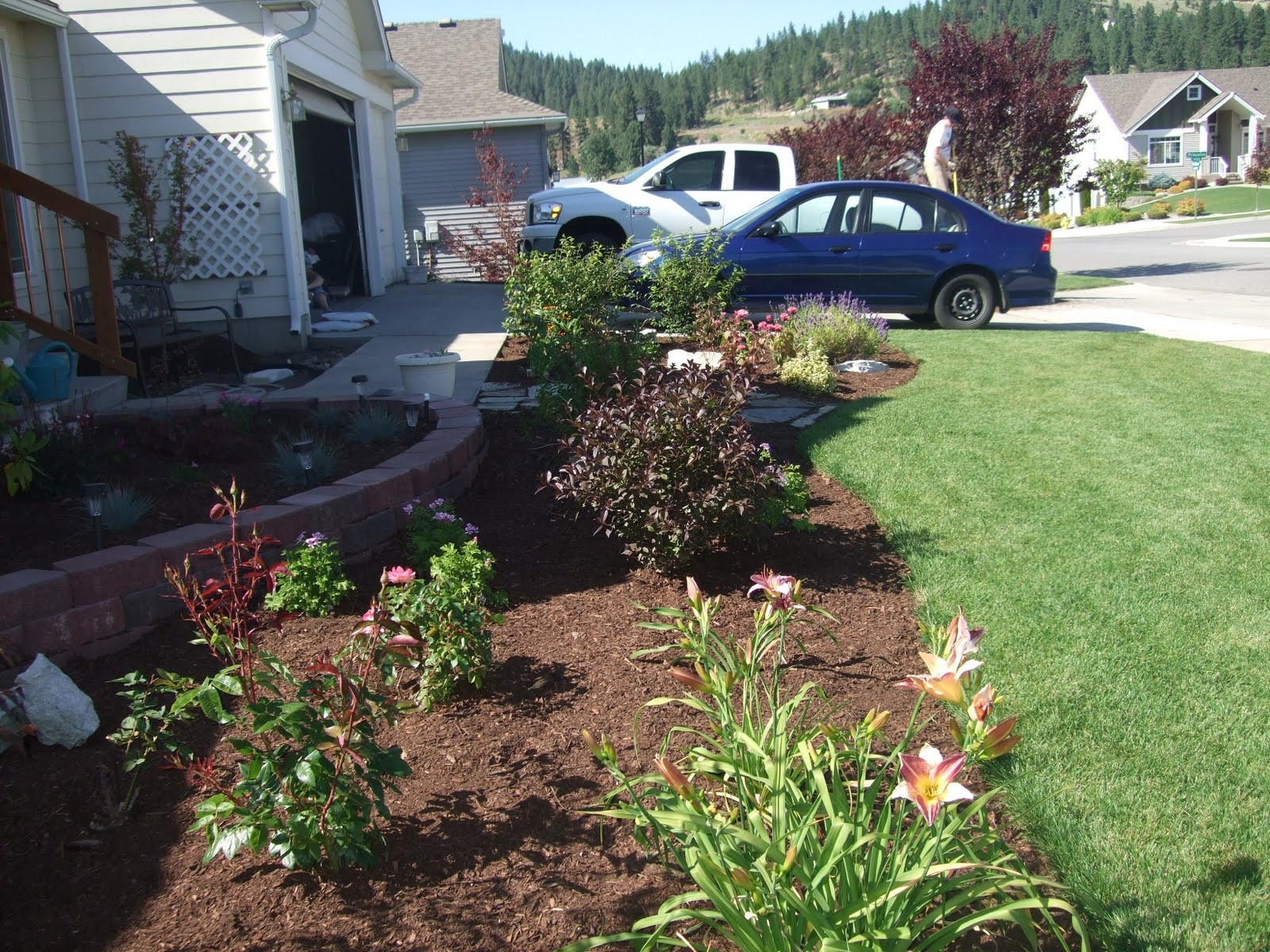 Front Yard Landscape Picture  THE FOLKS AT HOME Front Yard Landscaping