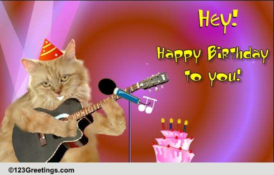 Funny Singing Birthday Cards  Singing Birthday Cat Free Songs eCards Greeting Cards