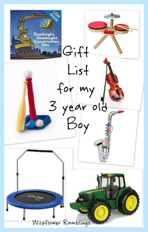 Gift Ideas For 3 Year Old Boys  t ideas for my 3 year old boy Wildflower Ramblings