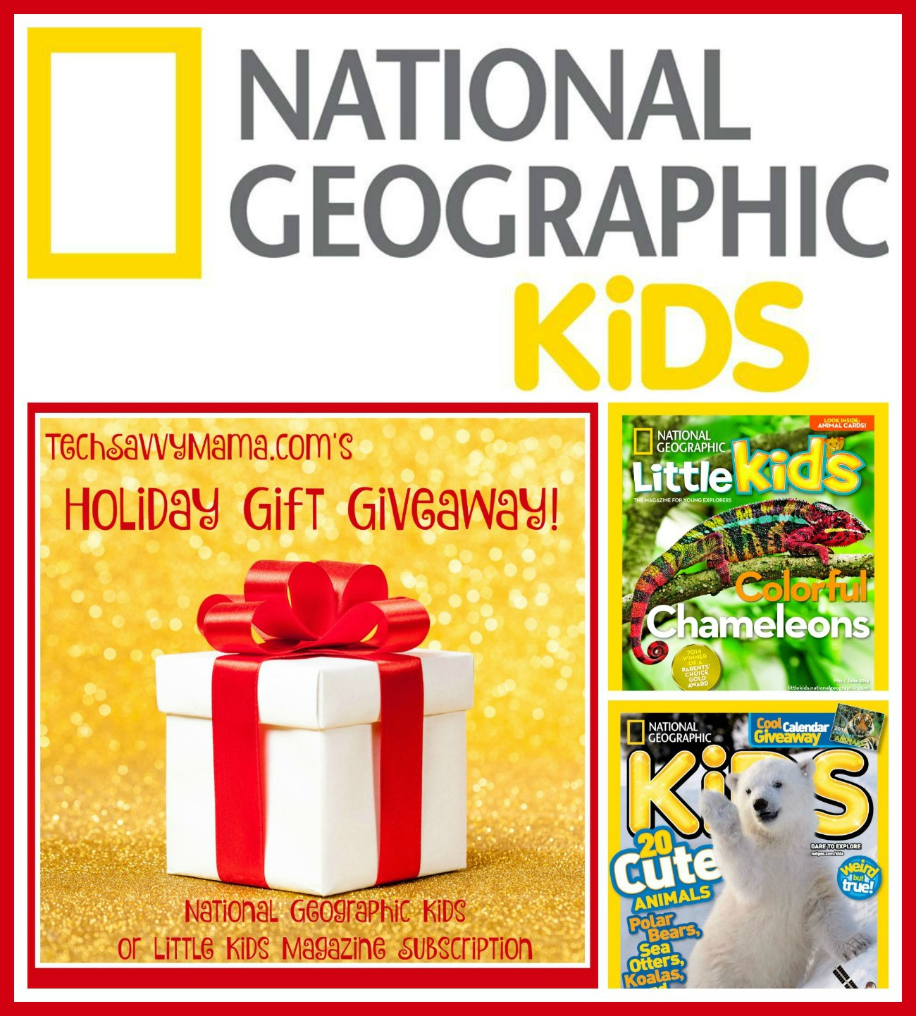 Gift Subscription For Kids  GIVEAWAY National Geographic Kids or Little Kids Magazine
