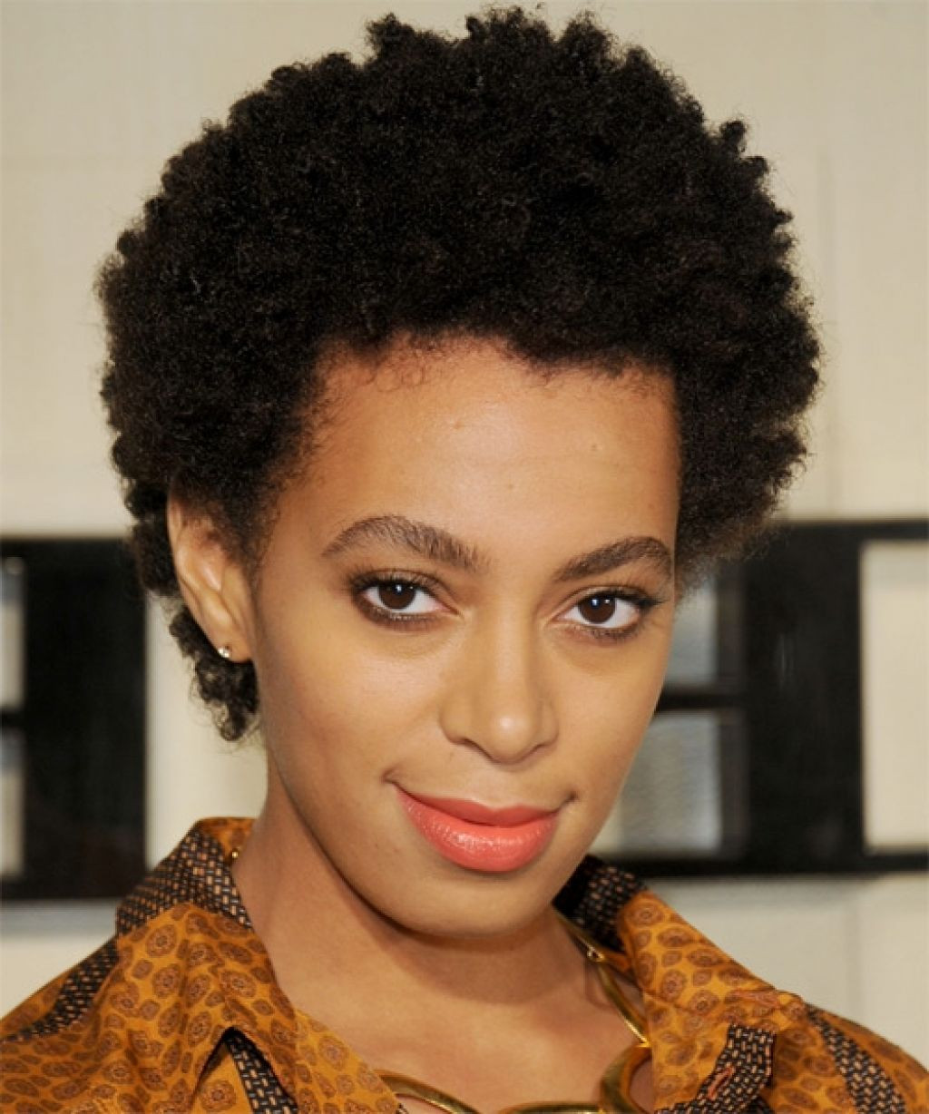 Hairstyles For Short Natural African American Hair  Natural Hairstyles 16 Short Natural Hairstyles You Will