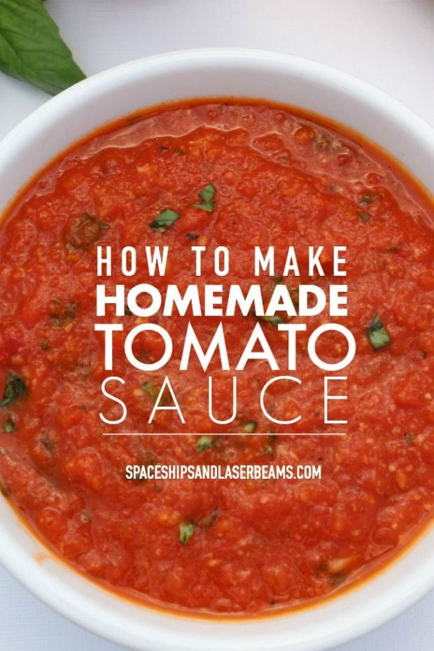 Homemade Spaghetti Sauce From Fresh Tomatoes Real Italian  How to Make Homemade Tomato Sauce Spaceships and Laser Beams