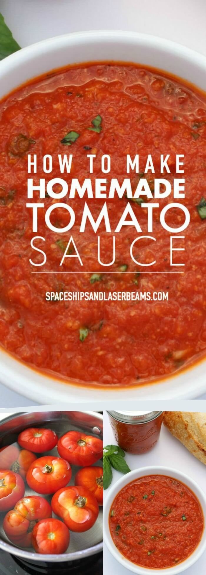 Homemade Spaghetti Sauce From Fresh Tomatoes Real Italian  How to Make a Delicious Homemade Tomato Sauce via