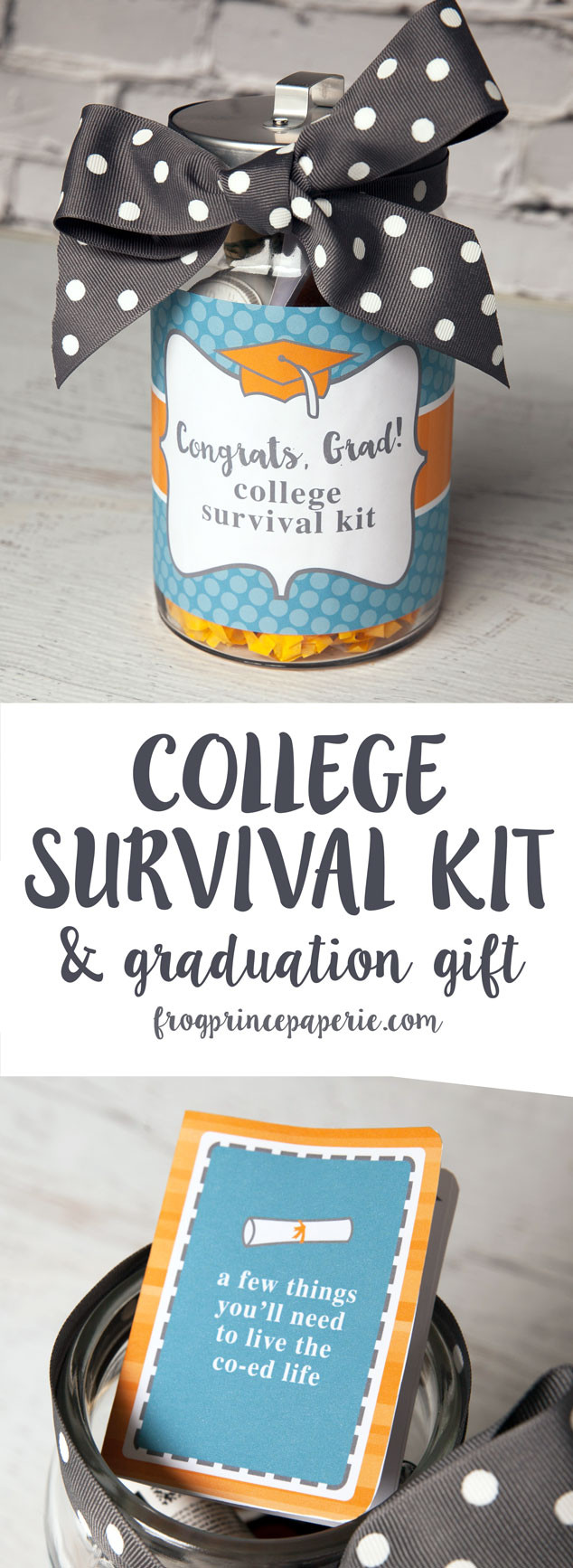 Ideas For A High School Graduation Gift  College Survival Kit DIY Graduation Gift Frog Prince Paperie