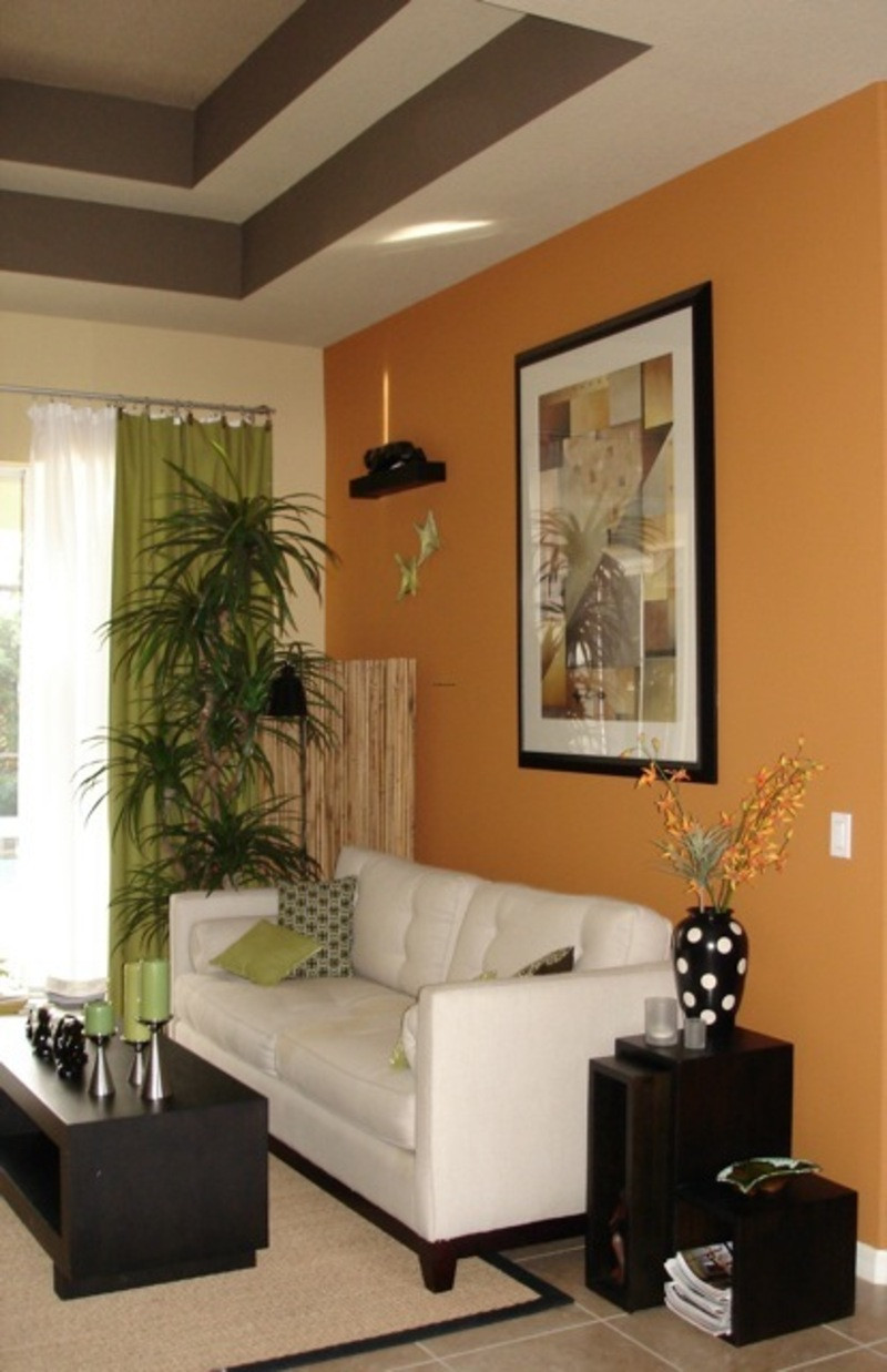 Living Room Paint Color  Are the Living Room Paint Colors Really Important