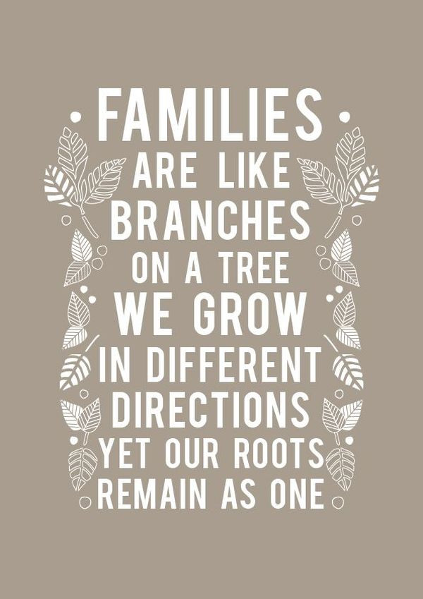 Love Family Quotes  Family Quotes Short Love My Family Sayings