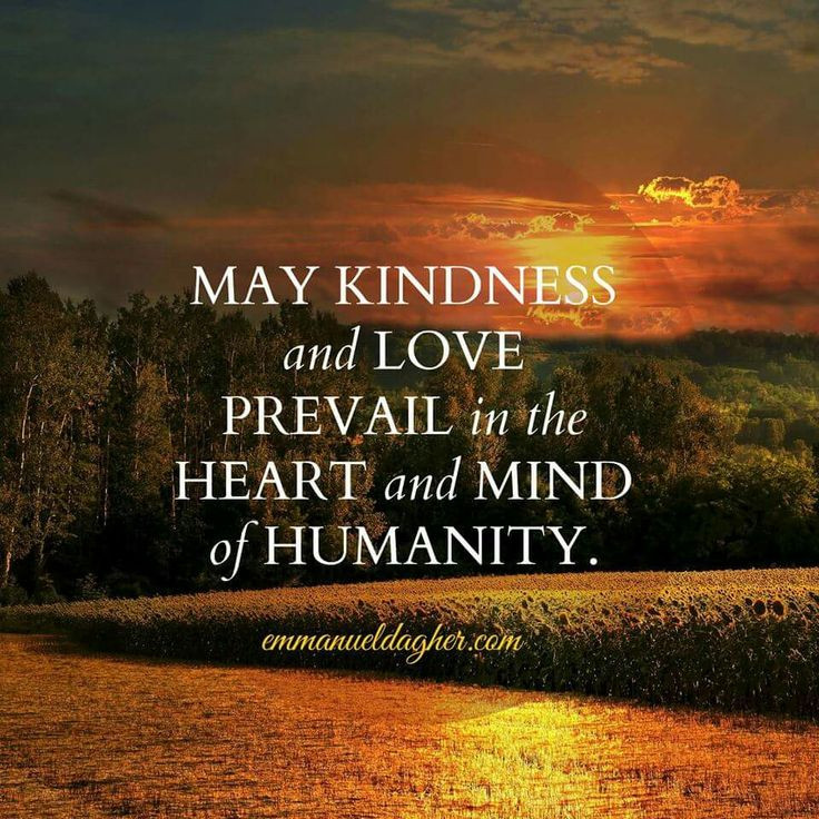 Loving Kindness Quotes  Kindness & Love ♥