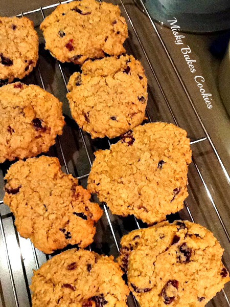 Low Fat Low Sugar Oatmeal Cookies  Reduced Sugar Low Fat Oatmeal Cookies with Dried