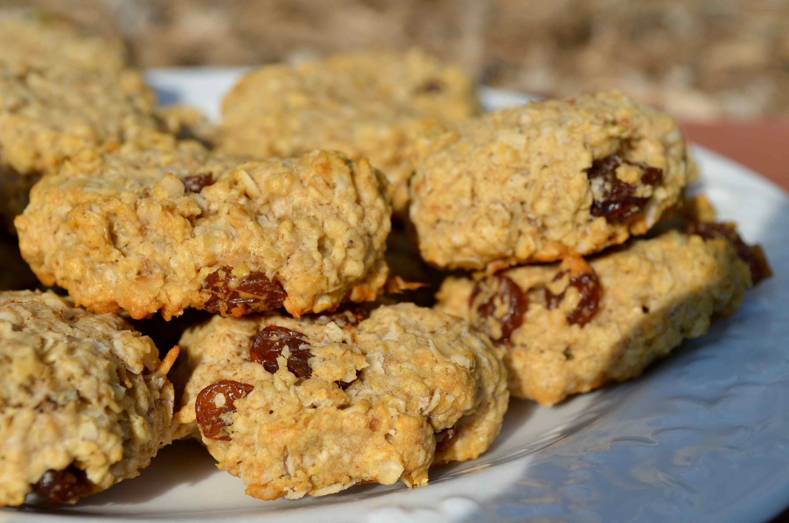 Low Fat Low Sugar Oatmeal Cookies  Sugar Free Low Fat Low Carb Mini Oatmeal Raisin Cookies