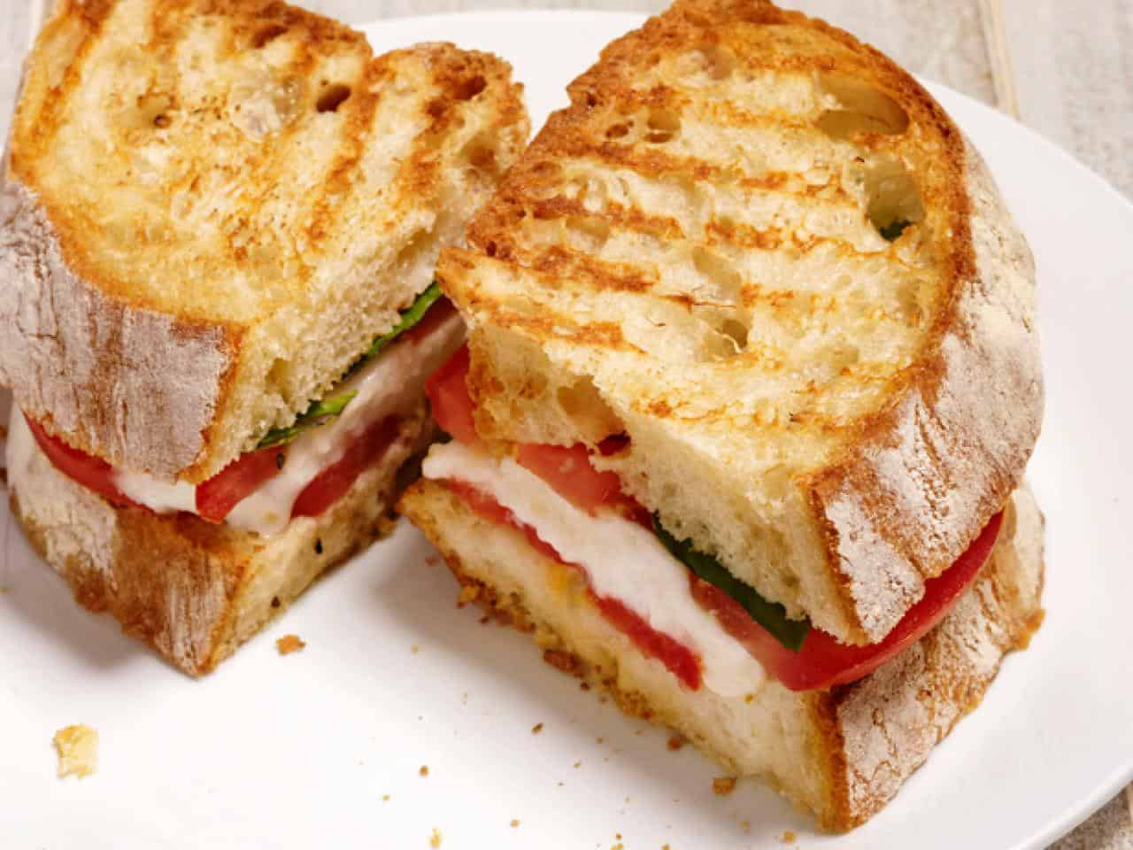 Panini Press Recipes  15 Awesome Recipes Made with a Sandwich Press