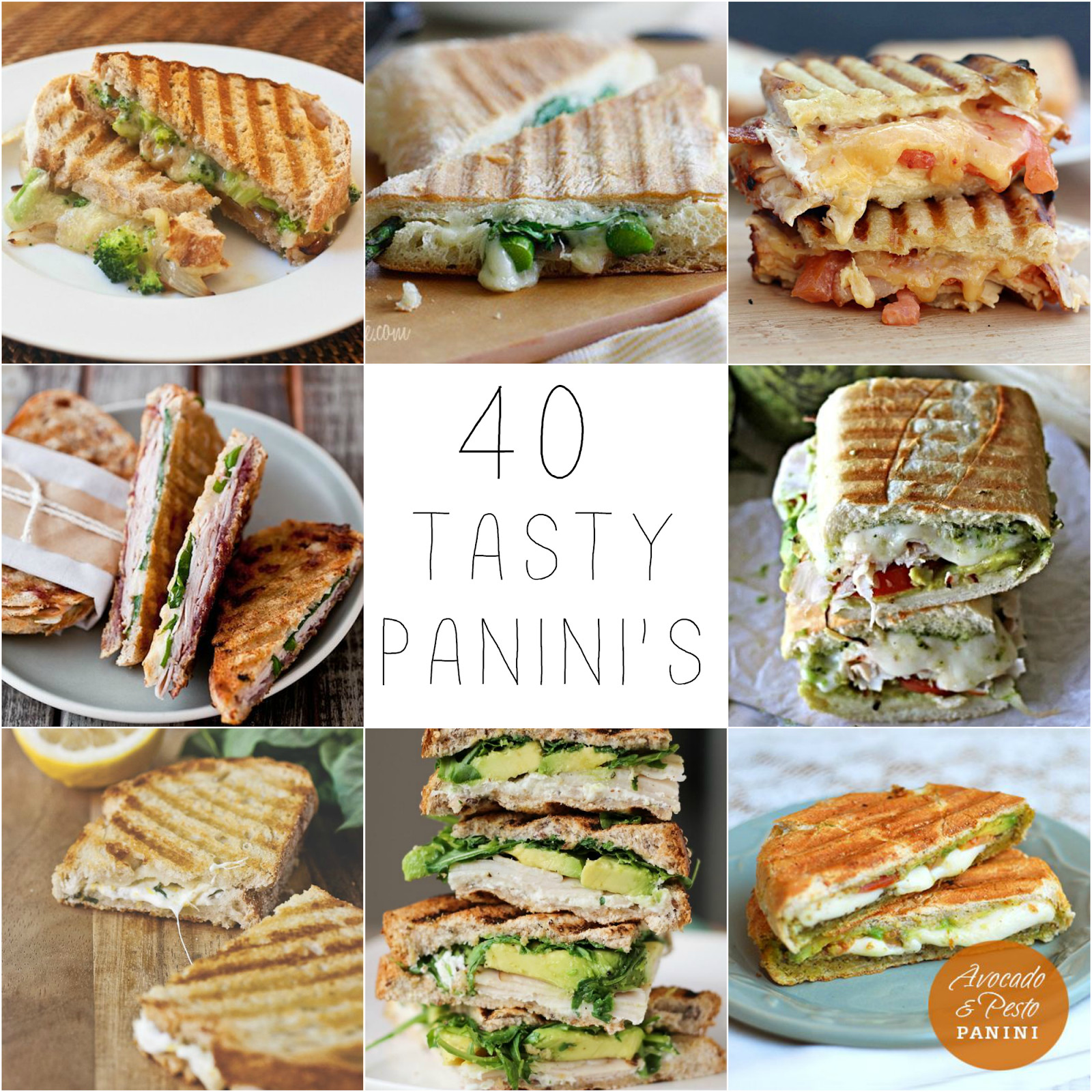 Panini Press Recipes  40 Panini Recipes
