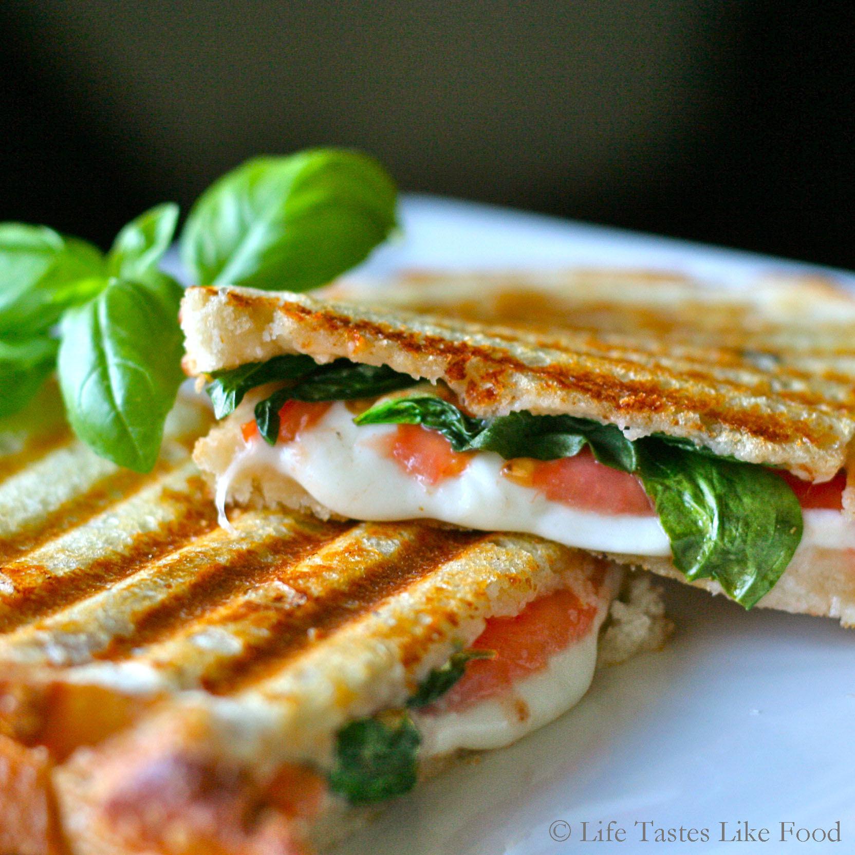 Panini Press Recipes  Easy Healthy Recipe Italian Panini