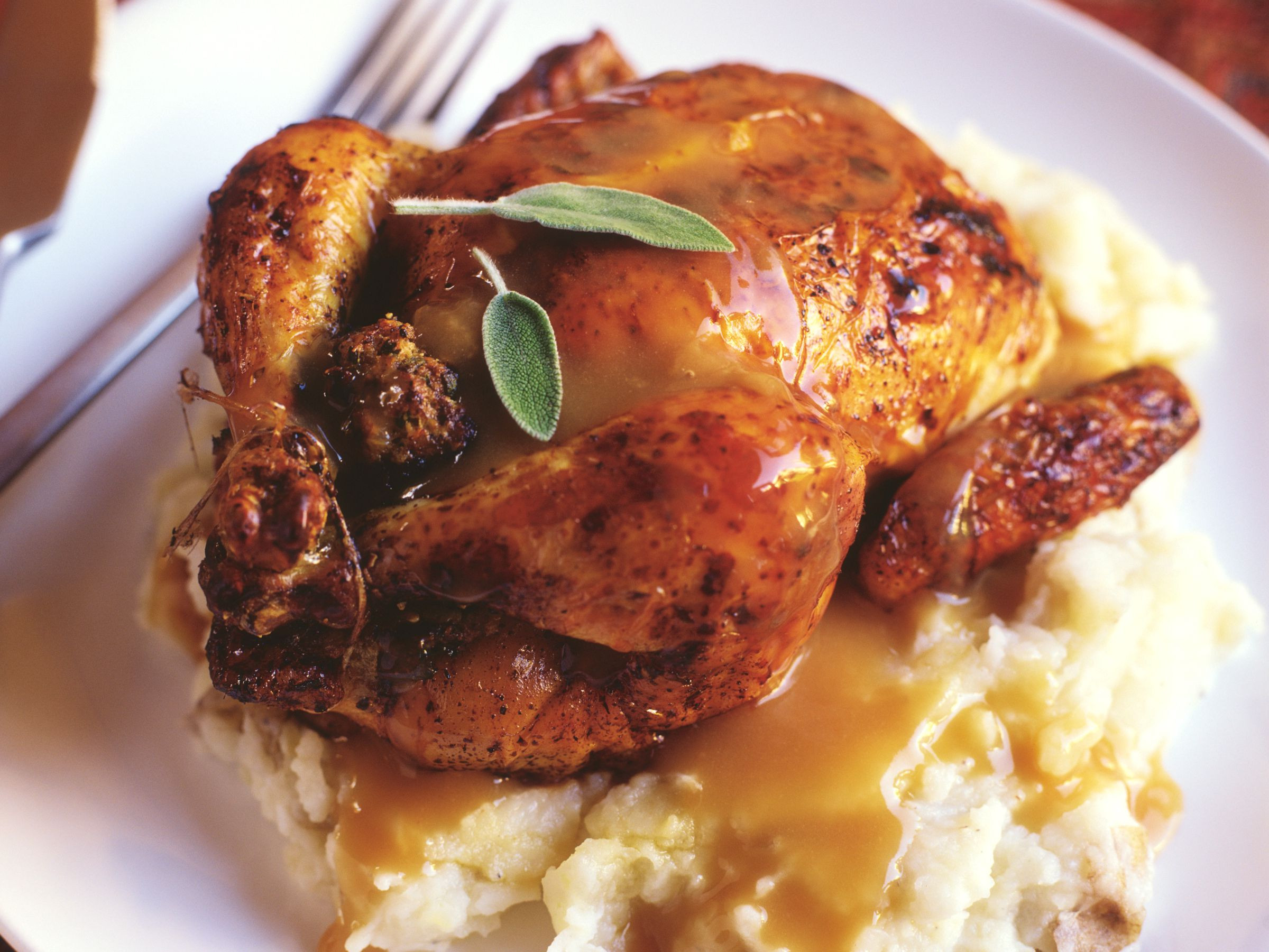 Recipes For Cornish Game Hens  Cornish Game Hen Glaze Recipes From Citrus to Apricot
