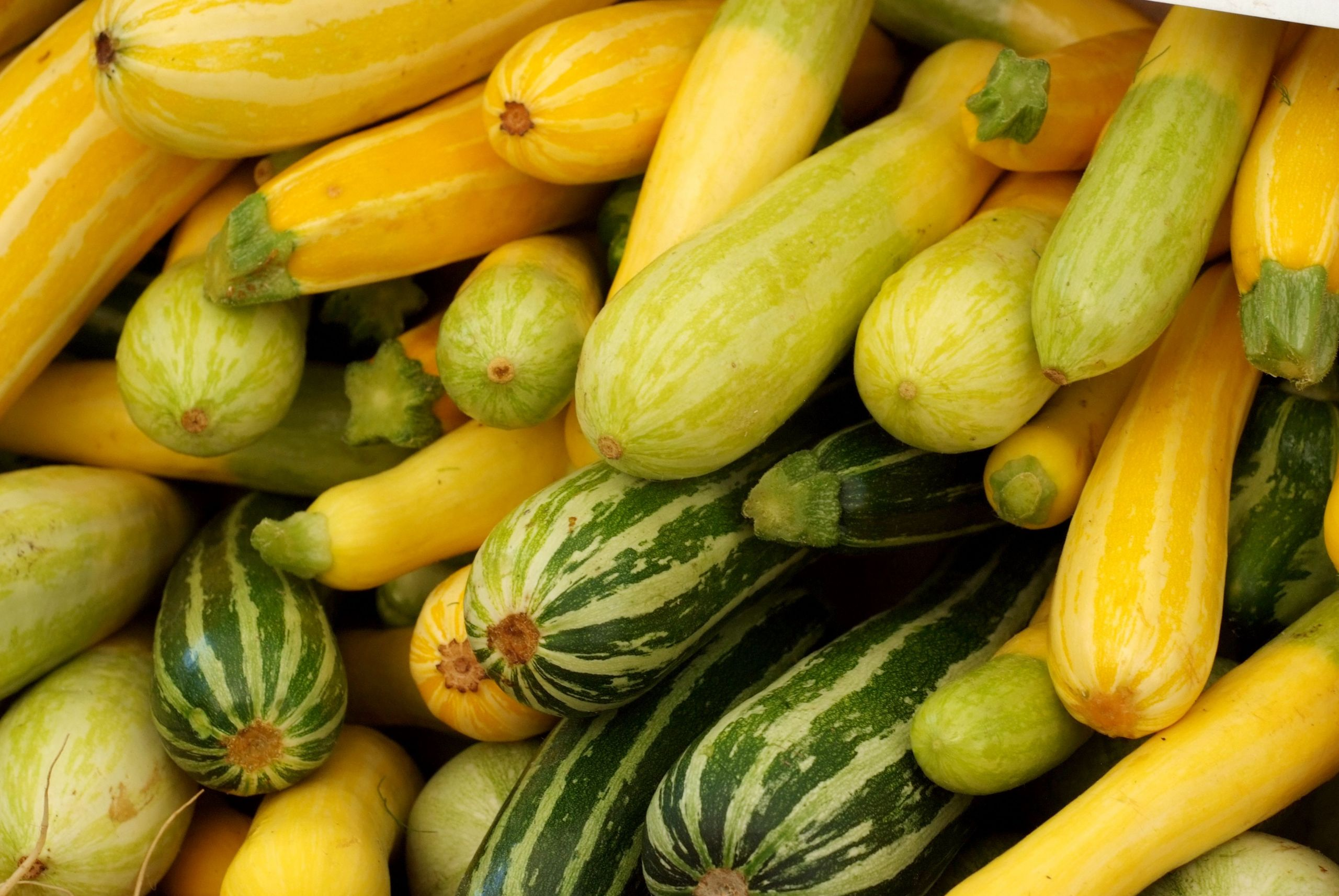 Summer Squash Nutrition  Summer Squash and Zucchini Nutrition Facts