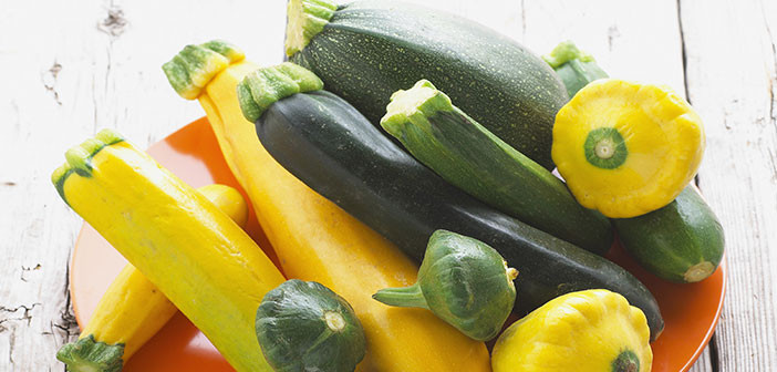 Summer Squash Nutrition  The Health Benefits of Summer Squash