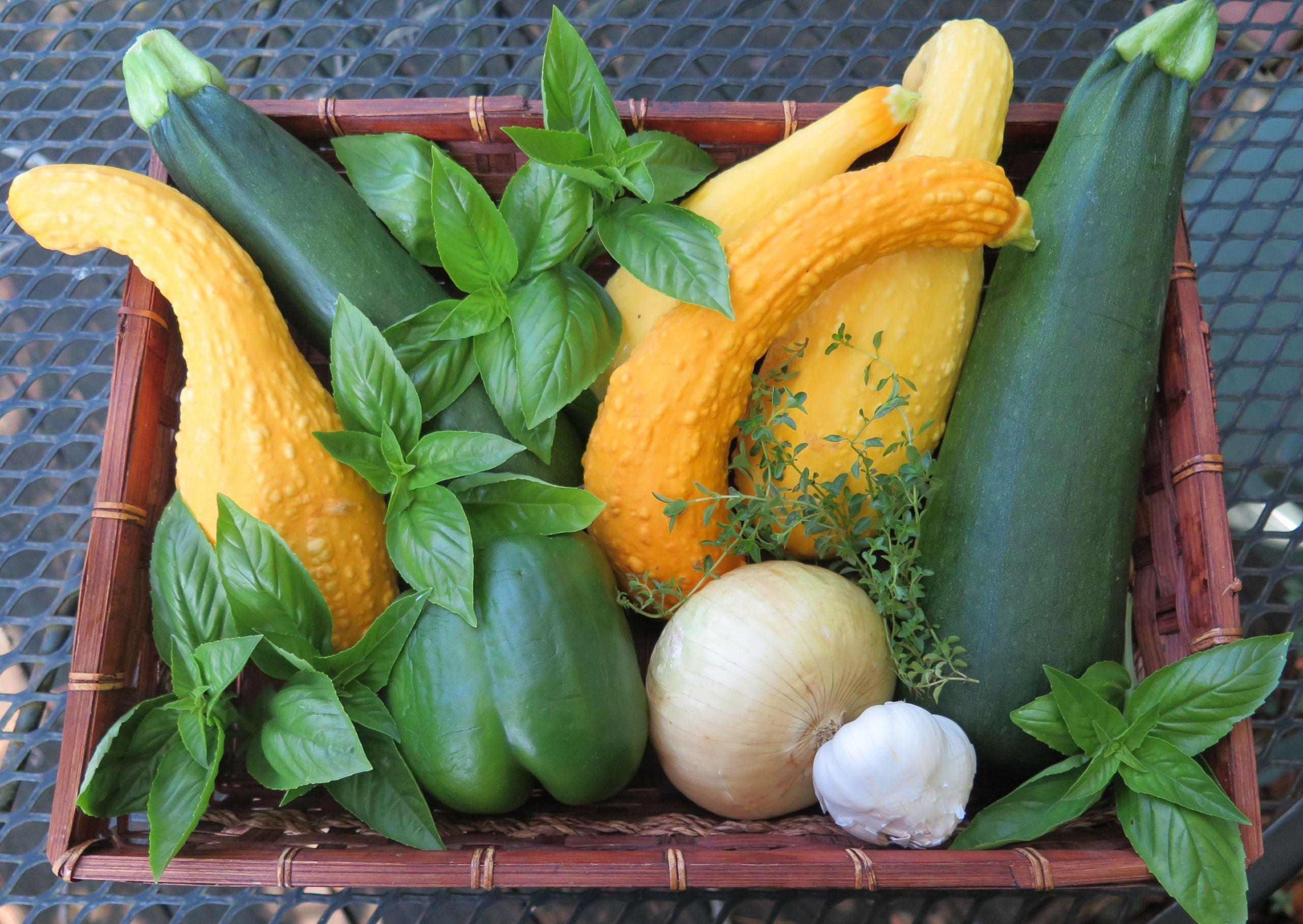 Summer Squash Nutrition  Two Summer Squash and Basil Recipes