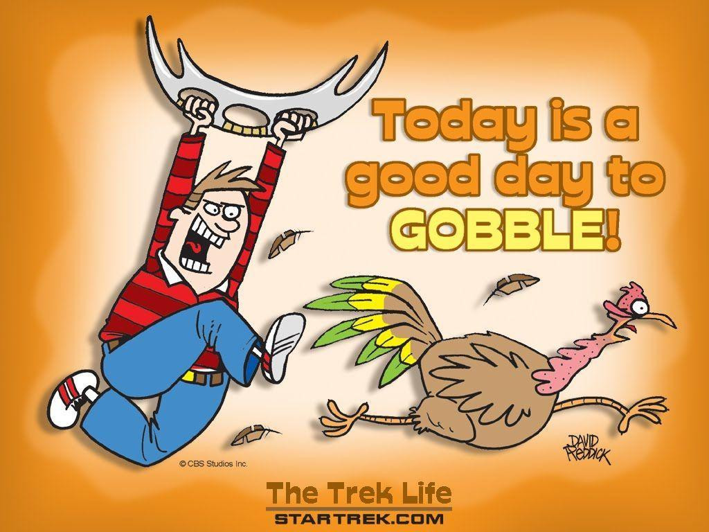 Thanksgiving Turkey Funny  Free Funny Thanksgiving Wallpapers Wallpaper Cave