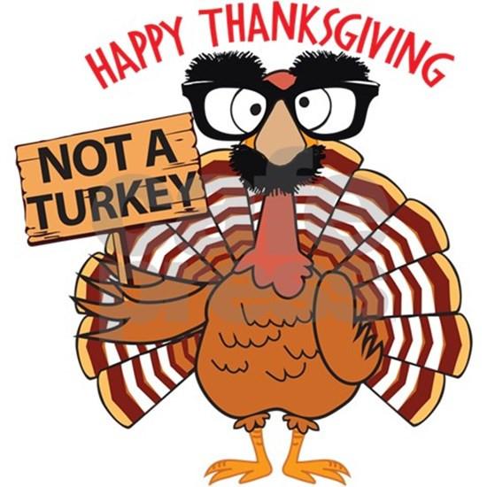 Thanksgiving Turkey Funny  Funny Thanksgiving Turkey Not a Turkey Happy Th by