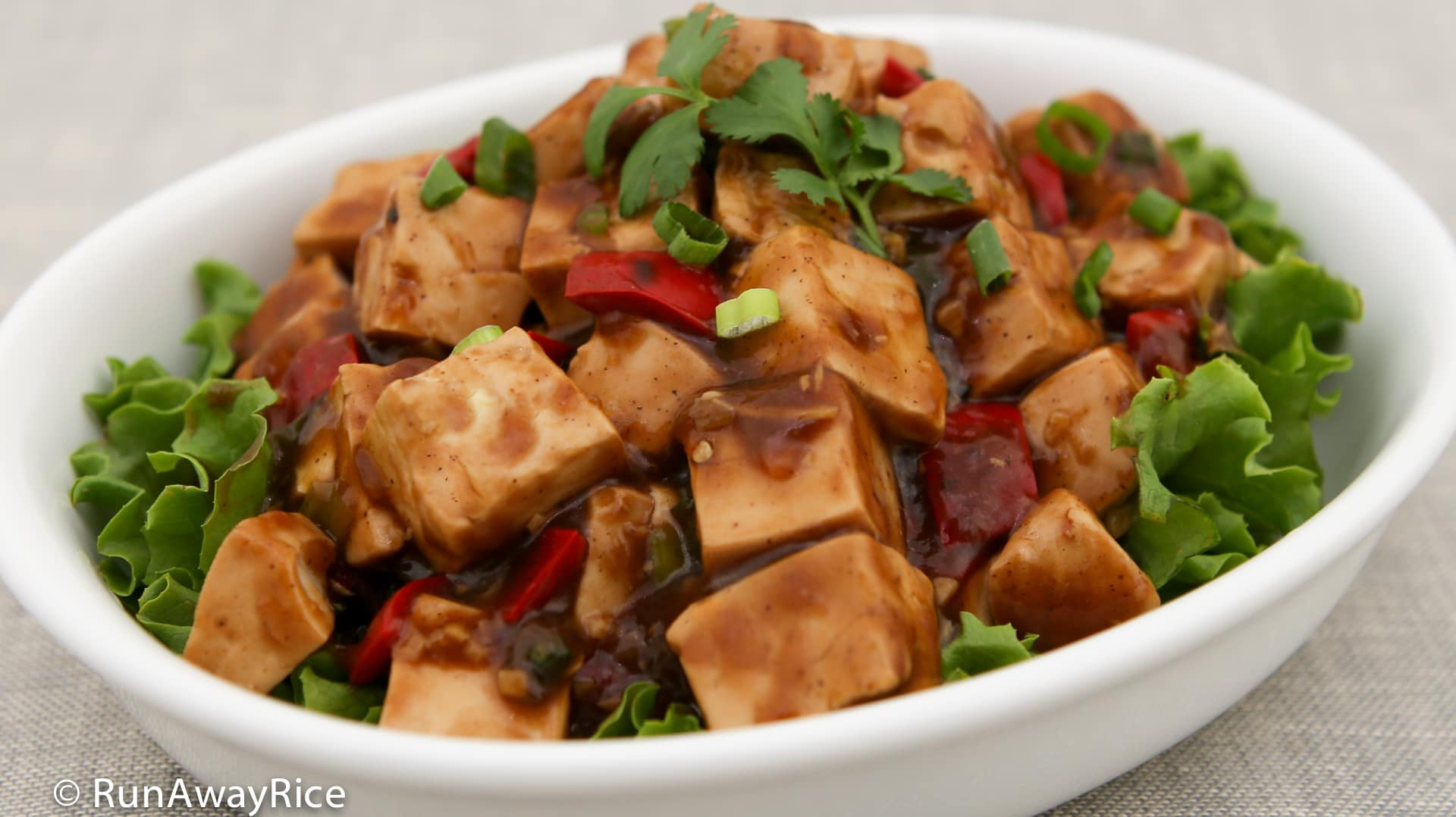Tofu Sauce Recipes  Tofu in Black Bean Sauce Quick and Easy Recipe with Video