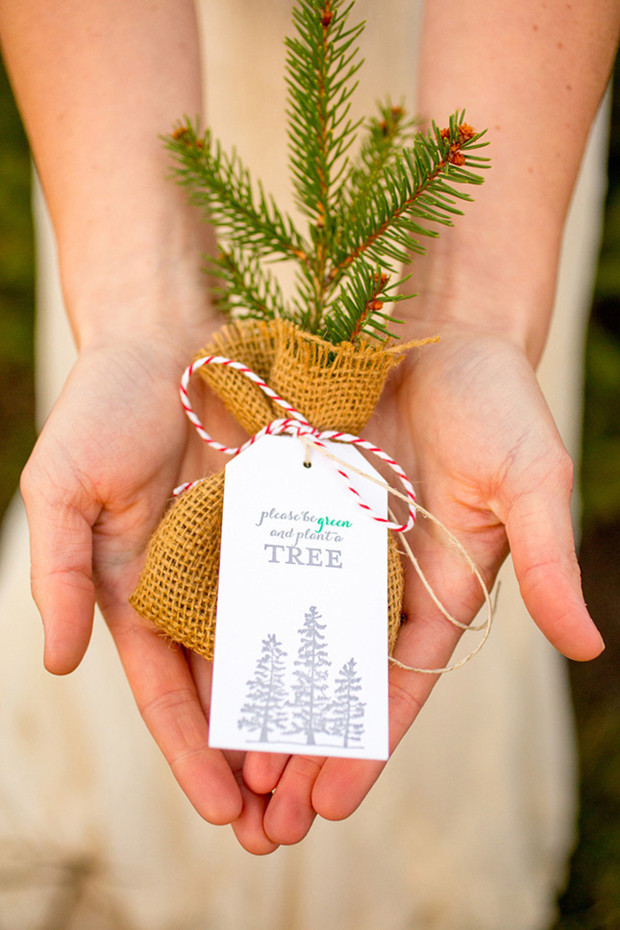 Tree Wedding Favors  10 Oh So Lovely Winter Wedding Favours