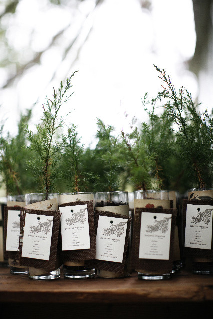 Tree Wedding Favors  5 Wedding Favours Your Guests Will Want to Hold To No