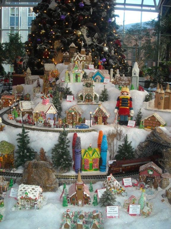 Winter Activities In Pittsburgh  From the Wintergarden to Dormont Winter Activities in