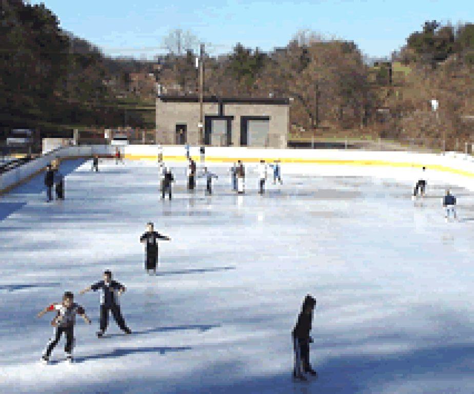Winter Activities In Pittsburgh  From the Wintergarden to Ice Skating Winter Activities in